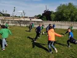 Welpen-jongens spelen op het grasveld